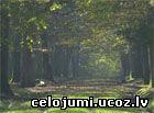 rambulē mežš