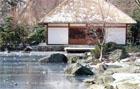 japāņu dārzs