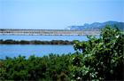 Ibizas sāls ezeri