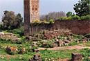 Dārzi Marokā