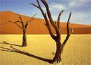 namībijas tuksnesis